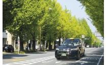 有限会社三ヶ森タクシー